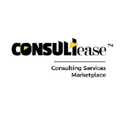 Gst and Tax Consultant